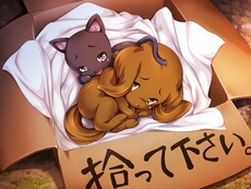 [DOKKOI SOFT]-REPAYING KINDNESS TWO ANIMALS THAT NEEDED HELP TRANSFORMED INTO GIRLS